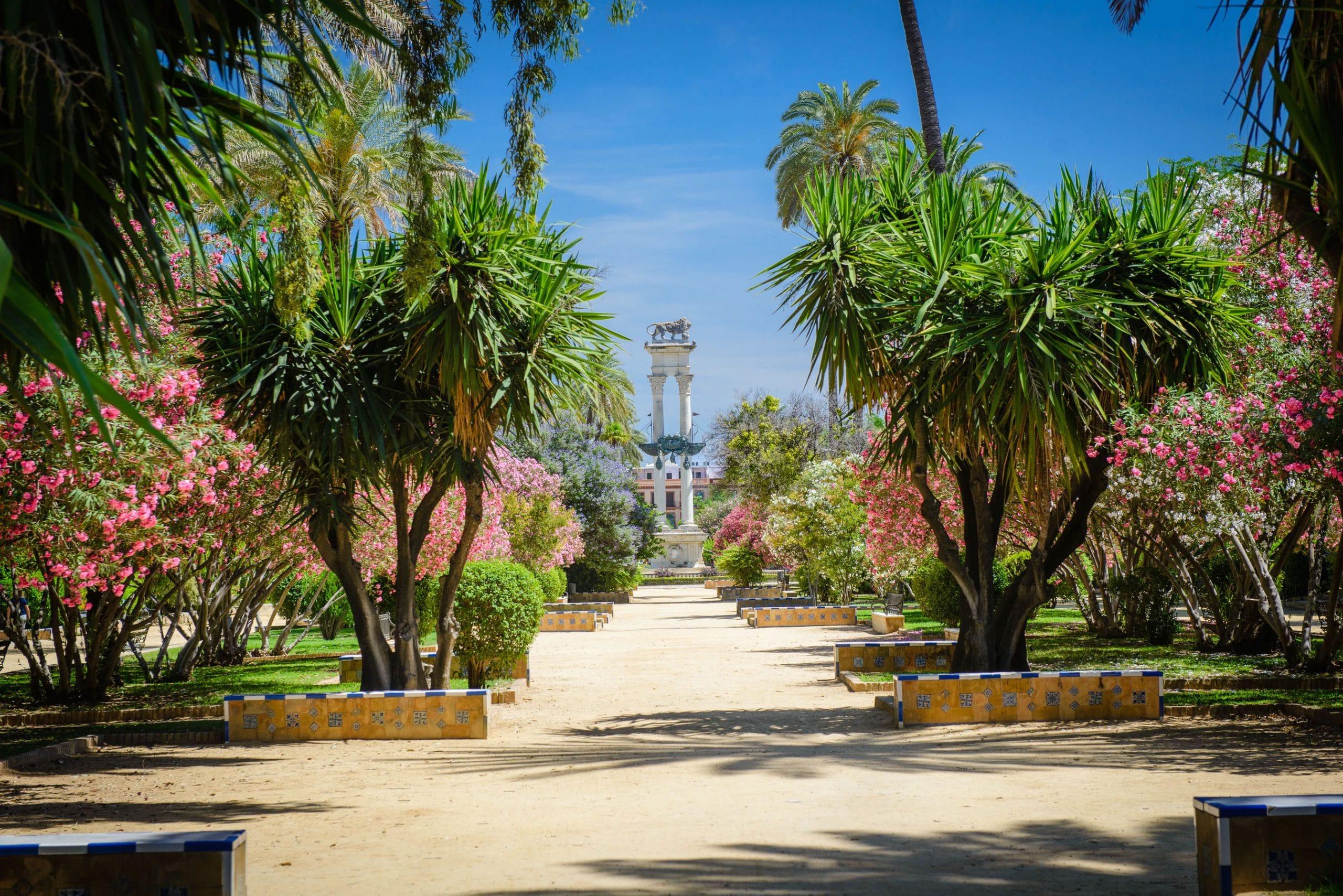 Entretien jardin Saint-Etienne