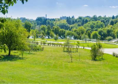 Paysagiste Loire (42)