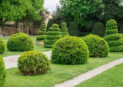 Entretien de jardin vers Lyon